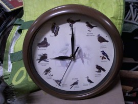 Horloge ronde des oiseaux - OK