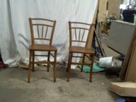 chaises   de  bristot